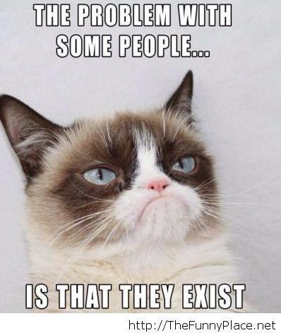 grumpy-cat-on-people-saying